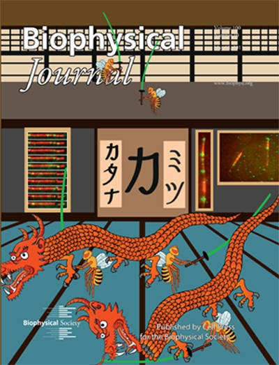 May 2011 BJ Cover Image