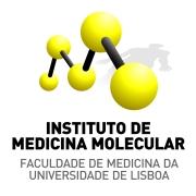 Portugal Logo3