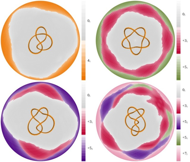 This image comes from a paper that was just published and is freely available for downloading: Eric Rawdon, Ken Millett, and Andrzej Stasiak, Subknots in ideal knots, random knots, and knotted proteins Scientific Reports 5:8928 (2015) http://www.nature.com/srep/2015/150310/srep08928/full/srep08928.html In the paper, we are trying to understand what sort of simpler knots lie inside more complicated knots.  These disks are our way of encoding the information.  But in and of themselves, I find them very beautiful.